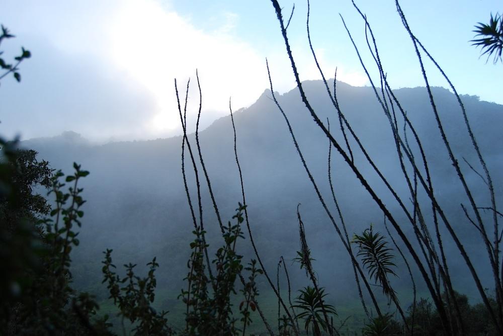 Ecuador Papallacta2