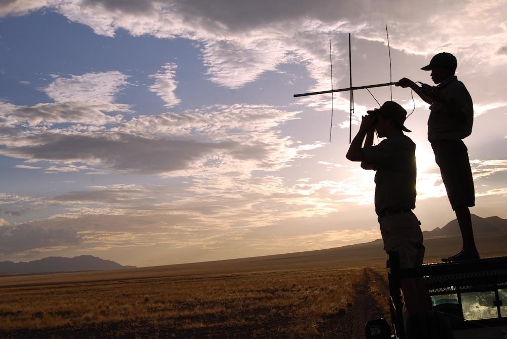 Namibia Ranger