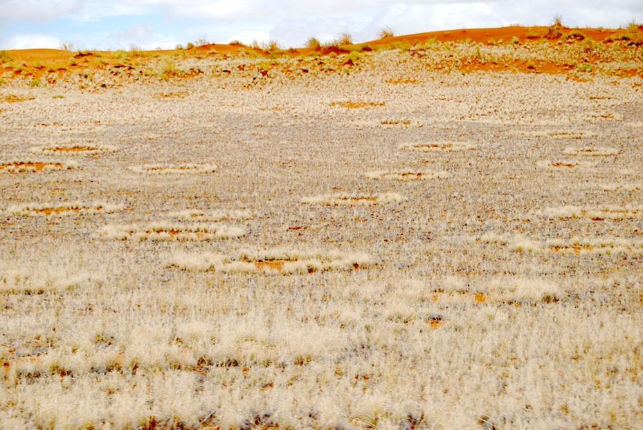 Namibia Feenkreise