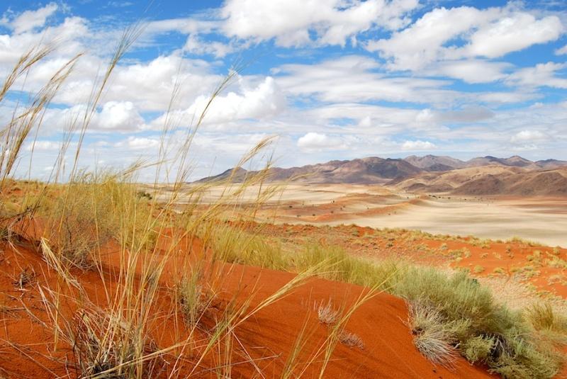 Namibia, ein hinreißendesFotomodell
