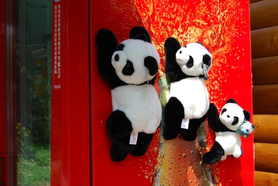 China Panda-Park2