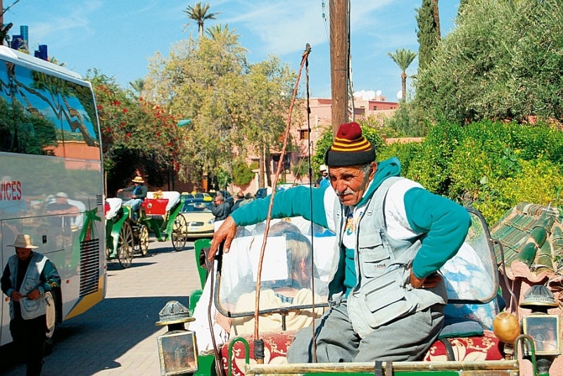 Mutterseelenallein in Marrakesch