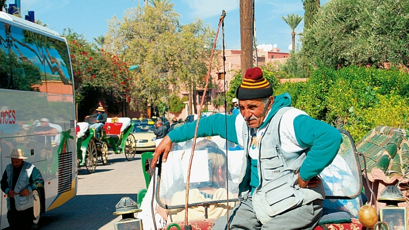Mutterseelenallein in Marrakesch