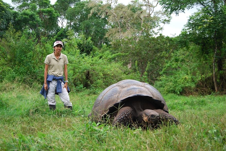 Riesenschildkroeten_Galapagos2