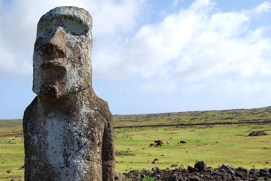 Osterinsel_Moai_Pferde