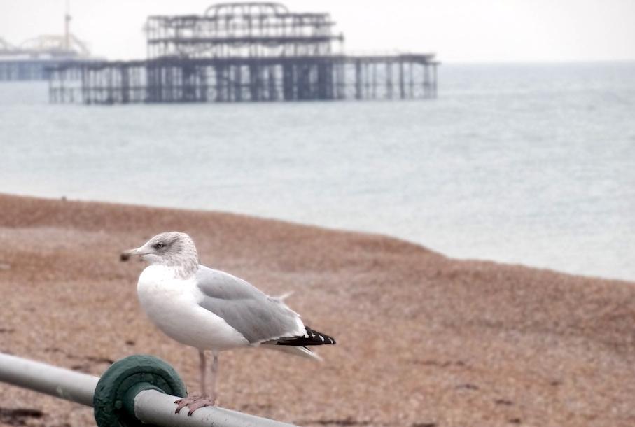 Brighton_West_Pier2