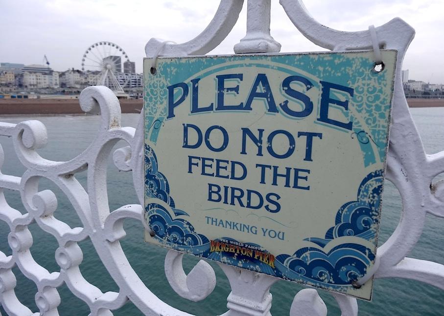 Brighton_Pier_Schild