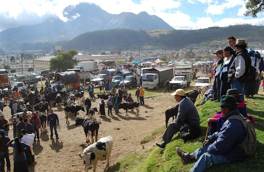 Ecuador_Otavalo_Viehmarkt_Panorama