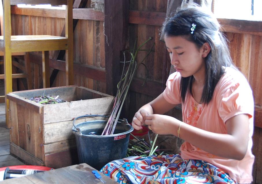 Myanmar_Inle_See_Lotusweberei2