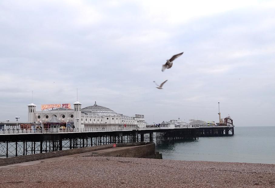 Brighton_Pier_Moewen2