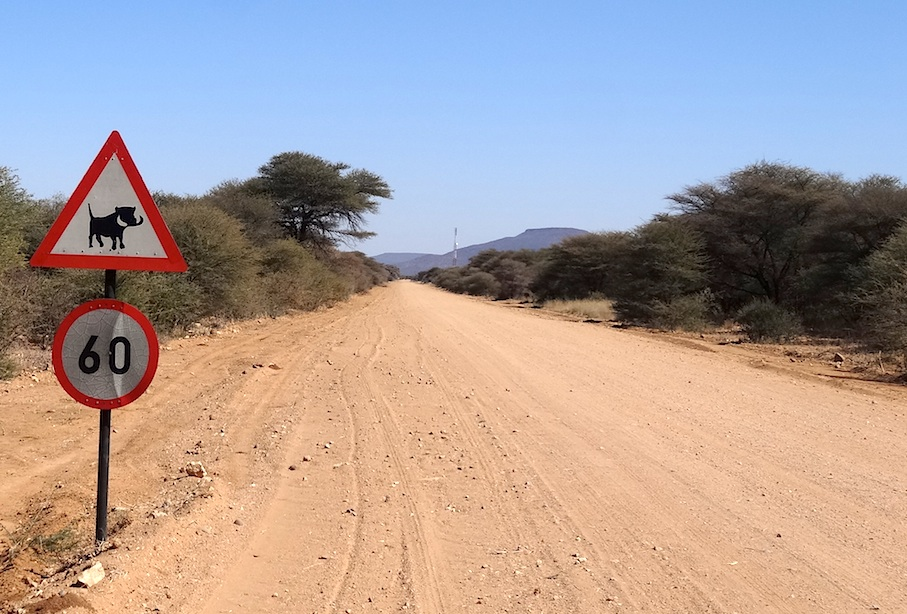Namibia_Landstrasse_Warzenschweine