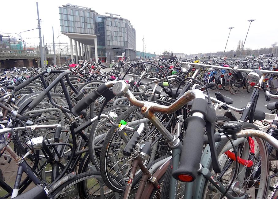 Amsterdam_Fahrradmeer