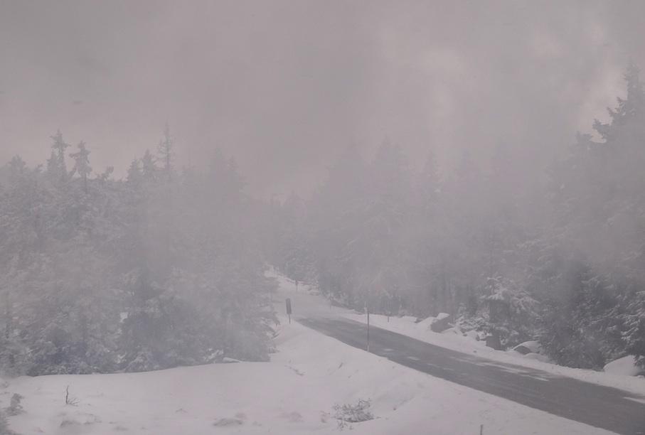 Harz_Brockenbahn_Nebel