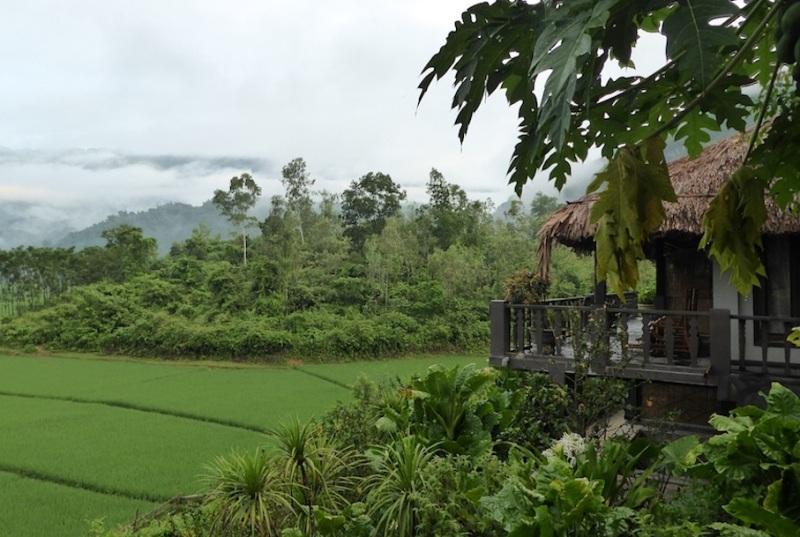 Mai Chau Ecolodge, Nebelschleier über neongrünenReisfeldern