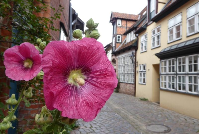 Abseits der Hipness-Hitparaden (Teil 3): Darum mal nach Lüneburgfahren