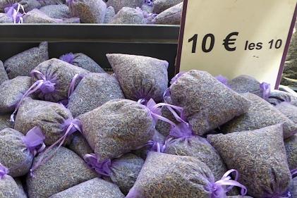 Frankreich_Isle_sur_la_Sorgue_Lavendel