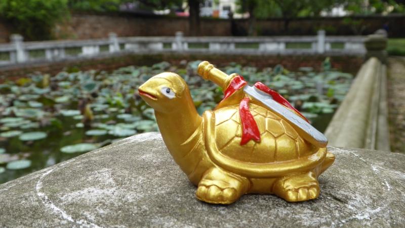 Interview mit einer goldenenSchildkröte